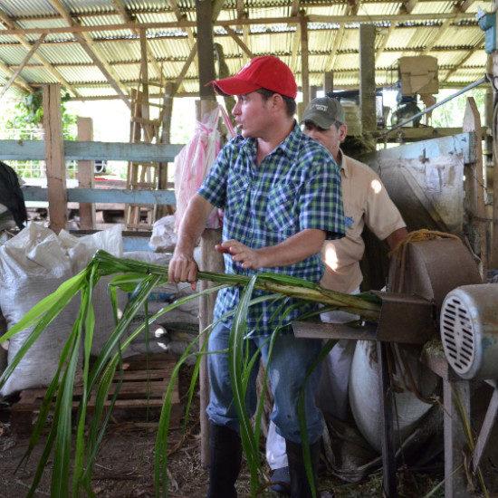 tierra-latina-atelier-communaute-rurale-costa-rica